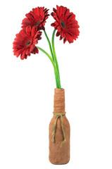 Beautiful red gerbera flowers