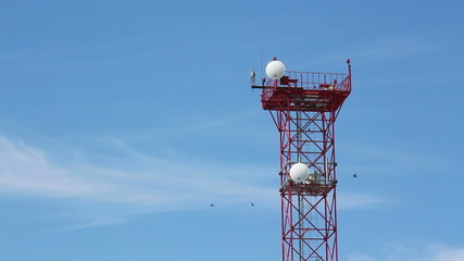 cell tower with birds flying around