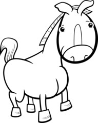 little horse or foal coloring page