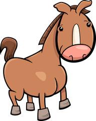 little horse or foal cartoon