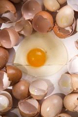 Broken eggshells