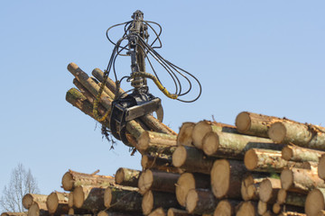 Forestry Equipment 3