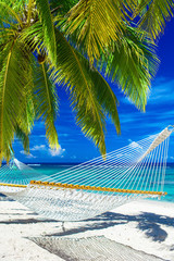 Hammock on the beach between palm trees overlooking ocean