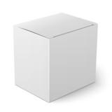 White paper box template.