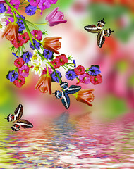 flowers tulips and butterflies