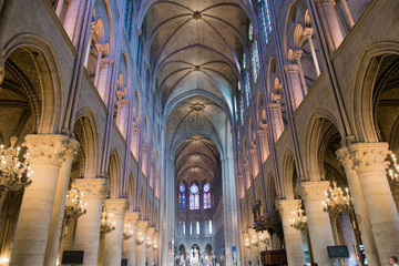 notre dame paris interior view