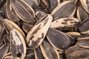 Close up of black sunflower seeds.
