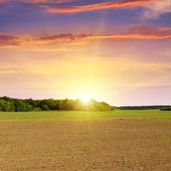 plowed field and beautiful sunset
