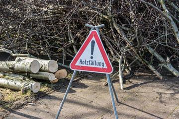 Holzfällarbeiten Holzfällung