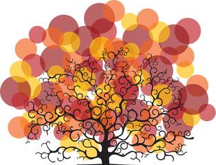albero con chioma colorata