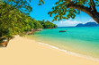 Exotic beautiful beach with white sand and blue ocean