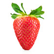 Fresh ripe strawberry isolated on a white background