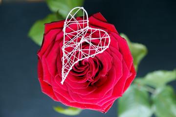 Rose mit Herz auf Schiefer