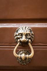 Maniglia, battente di porta a forma testa di Leone, bussare