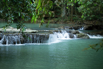 tropical forest, fern in waterfall stream, Thailand