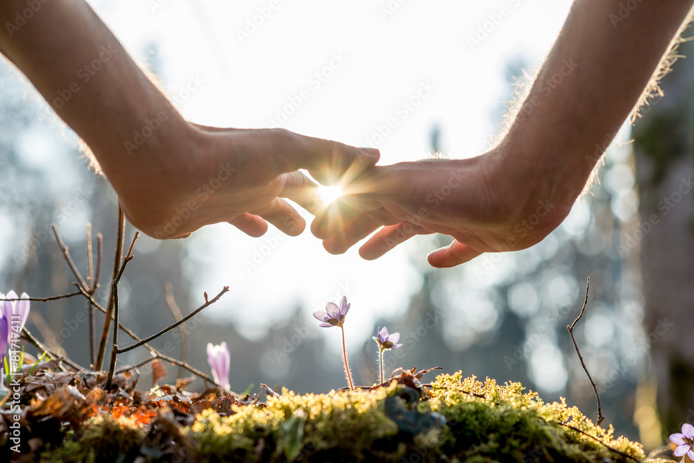 Hand Covering Flowers at the Garden with Sunlight