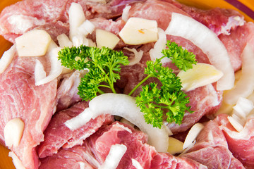 Cuban Cuisine: Close Up of Raw Marinated Pork Steaks