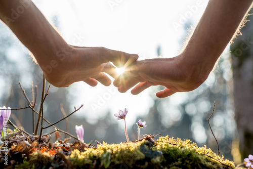 Leinwandbild Motiv Hand Covering Flowers at the Garden with Sunlight