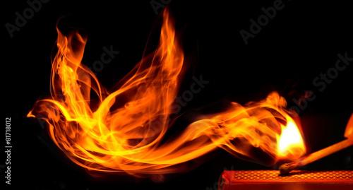 Leinwanddruck Bild Bird made of fire comes from a burning matchstick
