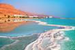 Dead sea salt shore. Ein Bokek, Israel - 81719622