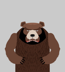 Angry bear standing