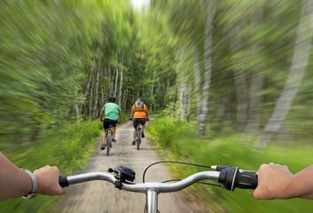 Radfahrer im Birkenwald dynamisch