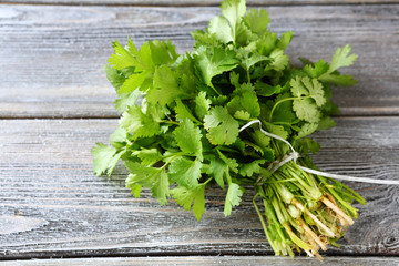 bunch of fresh cilantro on the boards