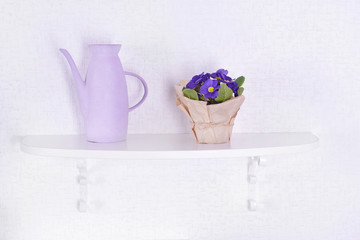 Flower on shelf on white wall background