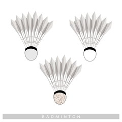 Set of Shuttlecock on A White Background