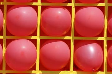 Pink balloons at shelf