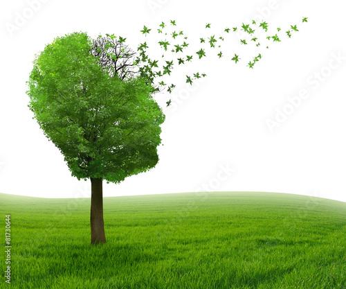 Brain disease memory loss due to Dementia Alzheimer's illness - 81730644
