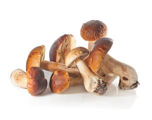 Boletus Edulis mushroom  over white background