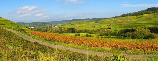 Herbst zwischen Mülheim und Veldenz