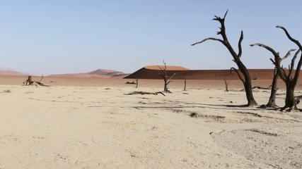 beautiful sunrise landscape of hidden Dead Vlei in Namib desert