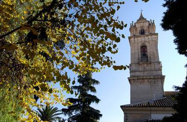 Campanario, torre, Iglesia de La Asunción, Cabra, Córdoba