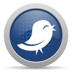 bird blue glossy web icon
