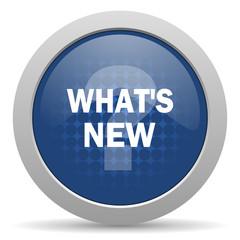new blue glossy web icon