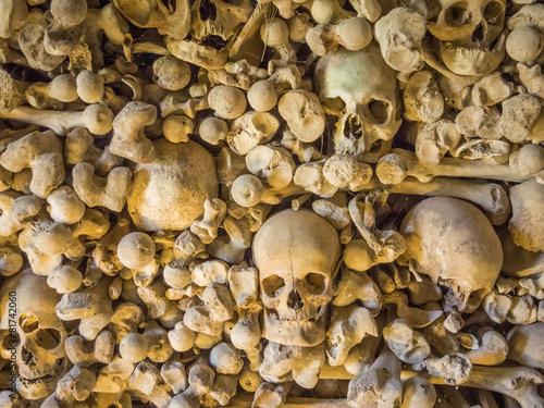 Poster huesos