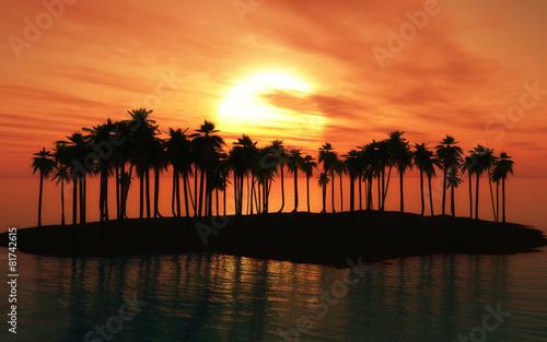Leinwanddruck Bild Palm tree island at sunset