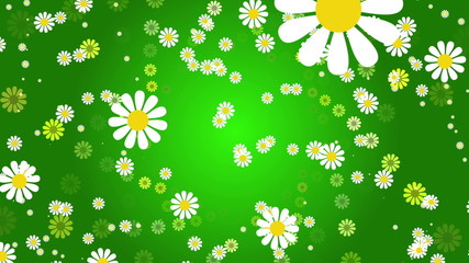 green abstract loop motion background, flower