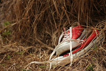 Red shoes on a background of straw.