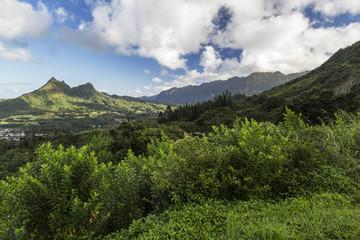 Mountains Along the Pali Highway at Nuuanu Pali State Park Oahu