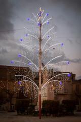 Noel Tree