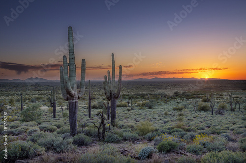 Foto op Plexiglas Zandwoestijn Sunset over the Phoenix Valley in Arizona