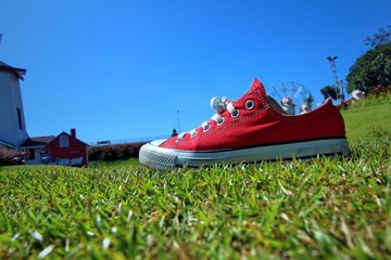 sneakers are on green grass