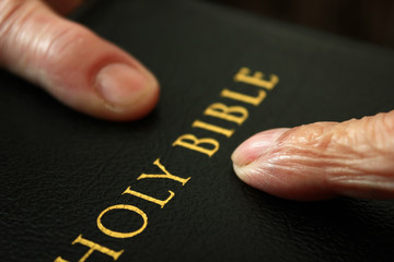 Fingers Pointing at the Words Holy Bible
