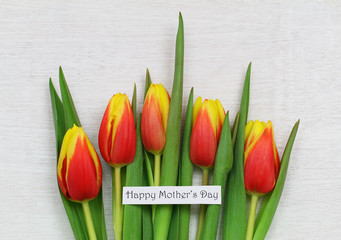 Happy Mother's day card with red and yellow tulips