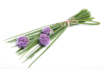 Chives with flowers isolated on white background