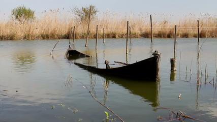 Sunken boat in the danube delta