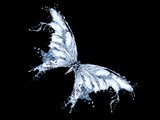 Butterfly made of water splashes